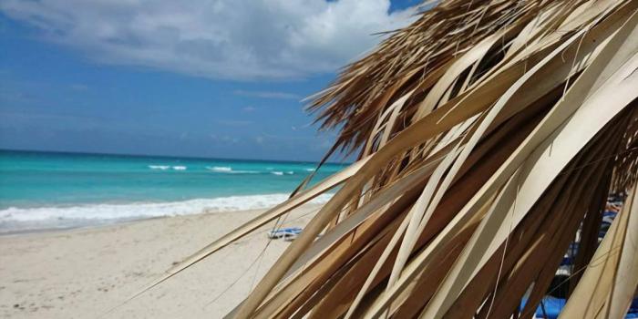 6 Dinge, die du tun kannst, während du in der Sonne chillst (und dabei trotzdem braun wirst)